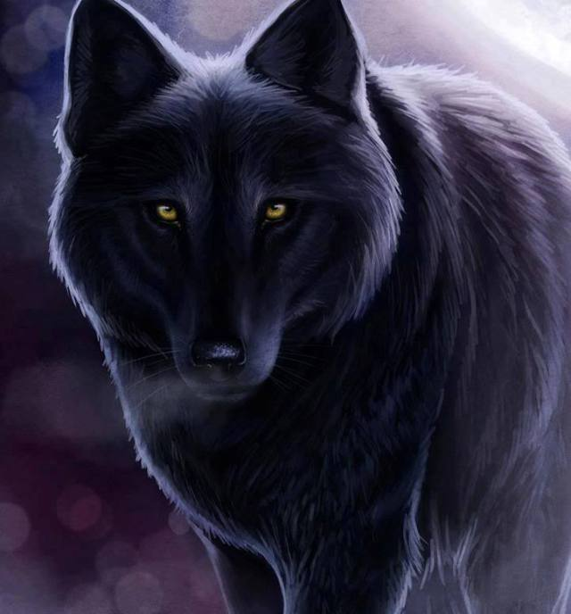 To our Revenge of the Ghost Wolf Readers, THANKS for the 5,400 page views on May the 3rd our highest day for page views this month of May, 2013 - Be sure to visit our other websites the CalPatty Press, Crooked County Crooks and the Concerned Citizens Free Press!