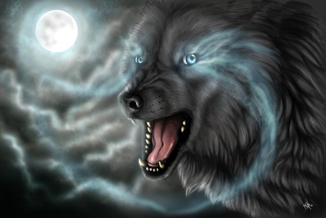 theghostwolfisgilmercountyislookingforyouknowwho