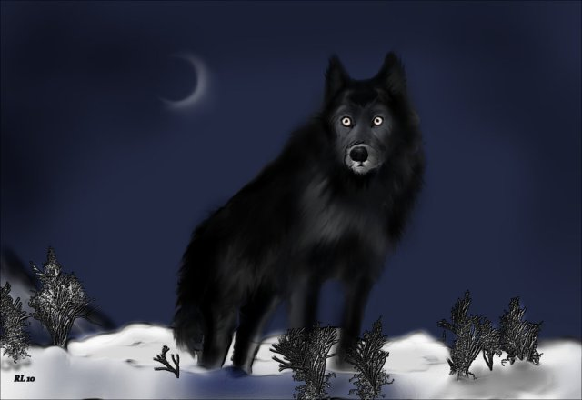 """...Lonely is the night when you hear the Ghost Wolf call!"""